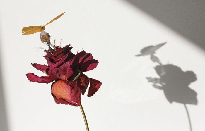 Amarist Studio - Atmosphere sculpture 6 (9)featured image