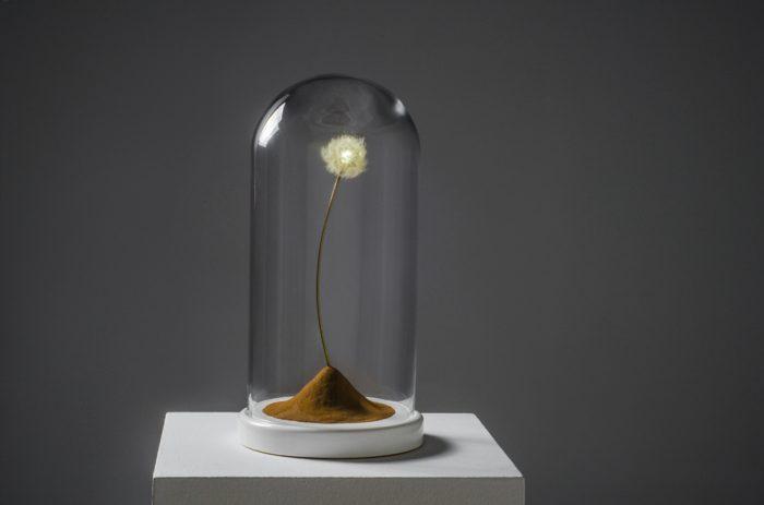 atmosphere-1- dandelion-in-desert-by-amarist-studio