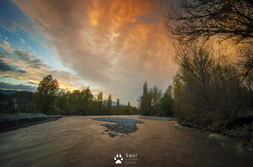 Amarist - Río Ara